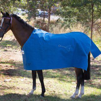 Pony Budget Lined Rug